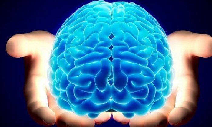 Uzmanları açıkladı: TC kimlik numarasını ezberleme şekli zeka türünüzü gösteriyor…