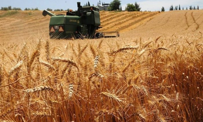 Üretim yapanlara ücretsiz arazi
