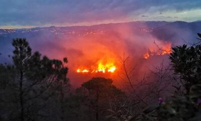 Muğla'da beşer dakika arayla iki orman yangını