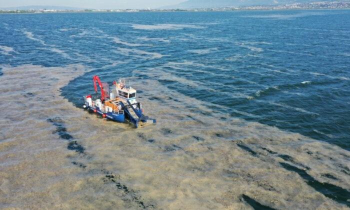 ODTÜ gemisi deniz salyası için görevde